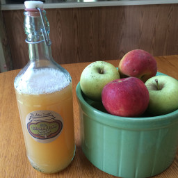 Fizzy Blender Juiced Apple Kombucha