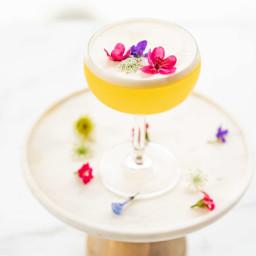 Floral Lemon Gin Sour
