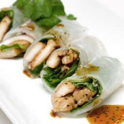 Fresh Chicken Spring Rolls
