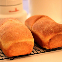 Fresh Milled Flour: Honey Whole Wheat Sandwich Bread Loaf