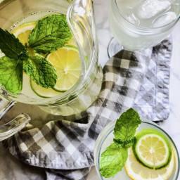Fresh Squeezed Lemon Limeade