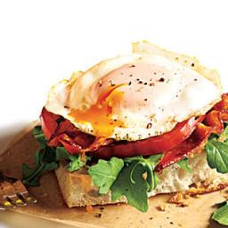 Fried Egg BLT Sandwiches
