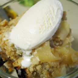 Fuji Apple Crisp w Vanilla Ice Cream