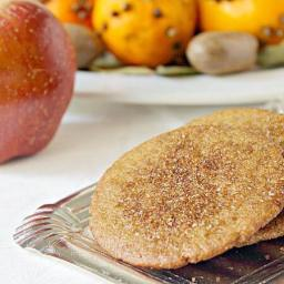 Ginger Snaps with Bite {#VirtualCookies}