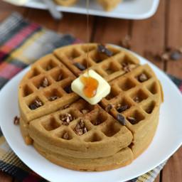 gluten-free-gingerbread-spice-waffles-1398800.jpg