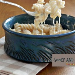 Gluten Free Mac and Cheese - A Noodles CopyCat Recipe