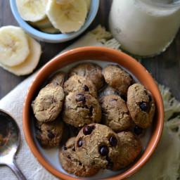 Gluten-Free Vegan Cookie Crisp Cereal