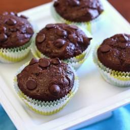 Gluten Free Vegan Double Chocolate Zucchini Muffins