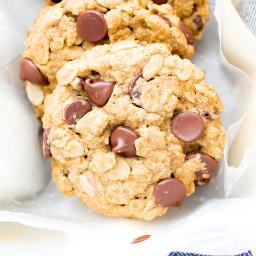 Gluten Free Vegan Oatmeal Chocolate Chip Cookies (V, GF, Dairy-Free)
