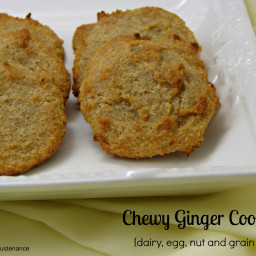 Grain Free Chewy Ginger Cookies