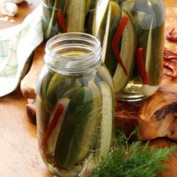 Grandma's Dill Pickles Recipe