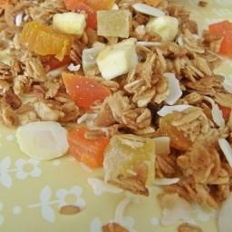 Granola tropical