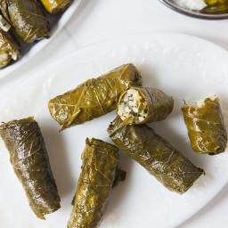 Greek Stuffed Grape Leaves With Rice and Herbs (Dolmadakia)