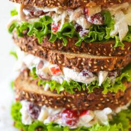 greek-yogurt-chicken-salad-san-43197f-190476ad3c1a02403b00f524.jpg