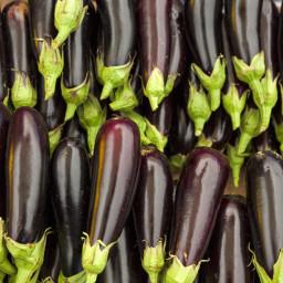 grilled-eggplant-salad-with-feta-pi.jpg