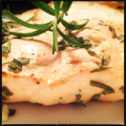 Grilled Salmon with Rosemary
