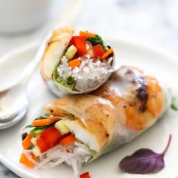 Grilled Shrimp Vietnamese Spring Rolls
