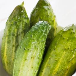 half-sour-pickles-e79cb4-daaf1f9c0e88837452217235.jpg