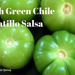 Hatch Green Chile Tomatillo Salsa