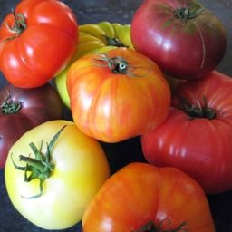 heirloom-tomato-salad-6.jpg