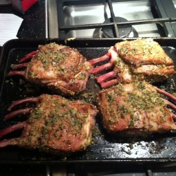 herb-roasted-rack-of-lamb.jpg