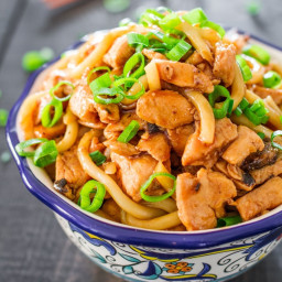 Hoisin Chicken Udon Noodles