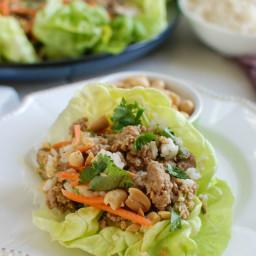 Thai Turkey Brown Rice Lettuce Wraps