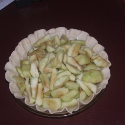 homemade-apple-pie-11.jpg