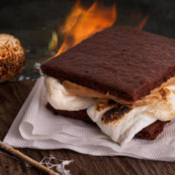 Homemade Chocolate Graham Cracker S'mores Recipe