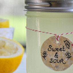 Homemade Sweet and Sour Mix Recipe
