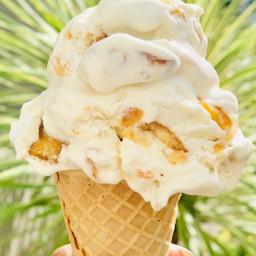 Homemade Vanilla (No Churn) Ice Cream