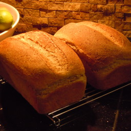 honey-whole-wheat-bread.jpg