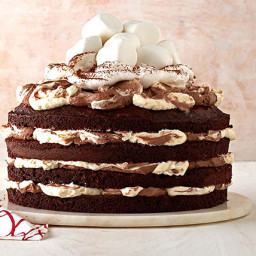 Hot Chocolate Torte