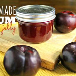 How to Make Homemade Jelly : Plum Jelly