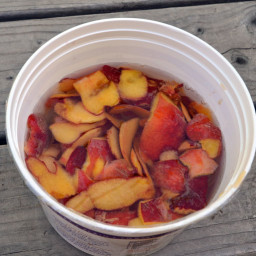 How to Make Homemade Peach and Other Fruit Vinegar