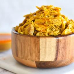 Instant Pot Tandoori Chicken Curry — Foodborne Wellness