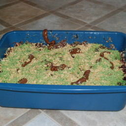 Recipes for kitty litter cake