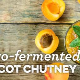 Lacto-Fermented Apricot Chutney