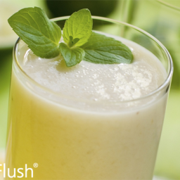 Lemon-Lime Pucker Smoothie