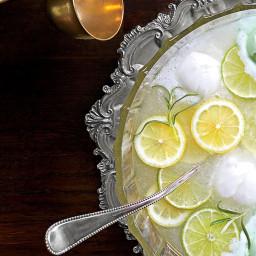 Lemon-Lime-Rosemary Punch