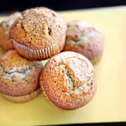 lemon-poppyseed-muffins-4.jpg