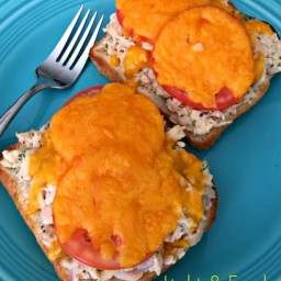 Light & Fresh Tuna Melt