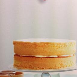 Light Sponge Cake
