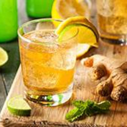 Lo-Cal Ginger Ale