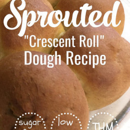 Low Carb Sprouted Crescent Roll Dough (aka Low Carb Pilsbury Crescent Do