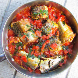 Mackerel and Tomato Sauce