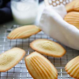 madeleine-recipe-2230051.jpg