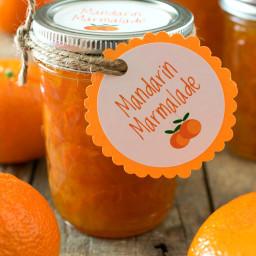 mandarin-marmalade-2206199.jpg