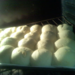 maybe-the-best-yeast-rolls-5.jpg