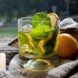 Meyer Lemon Mint Julep